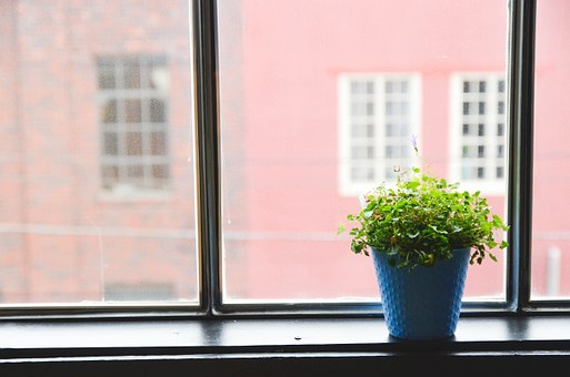 artificial office plants for desk or windows